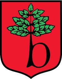 Gmina Brwinów